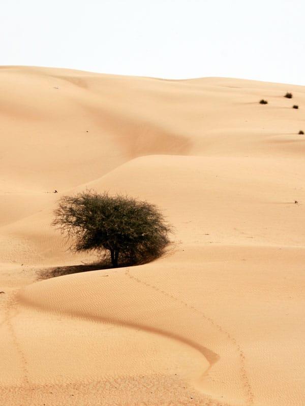 Oman Wetter - Gegebenheiten zwischen Klischee und Wirklichkeit 1