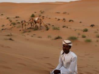 Sharqiya Sands - Sedimentperlen, verwoben zum rotgoldenen Traum des omanischen Ostens 1